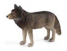 Timber Wolf Standing