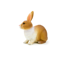 Rabbit Brown and White
