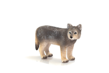 Timber Wolf Cub
