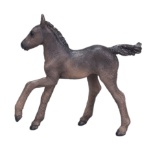 Arabian Foal Black